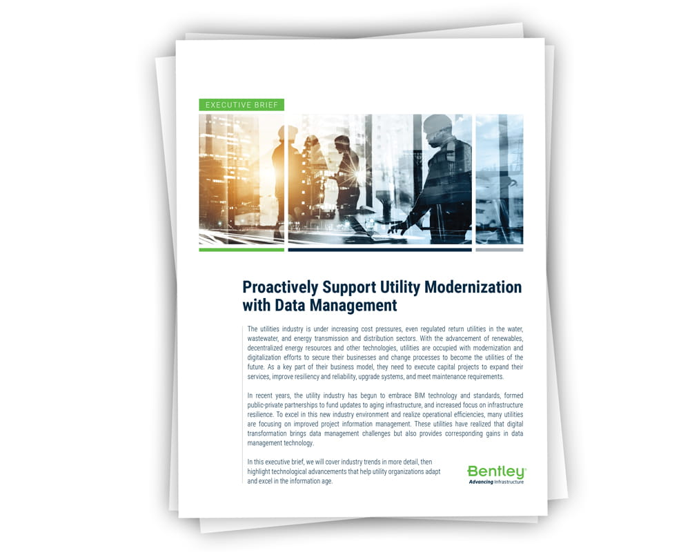 Proactively Support Utilities Modernization with Data Management Executive Brief Thumbnail Image